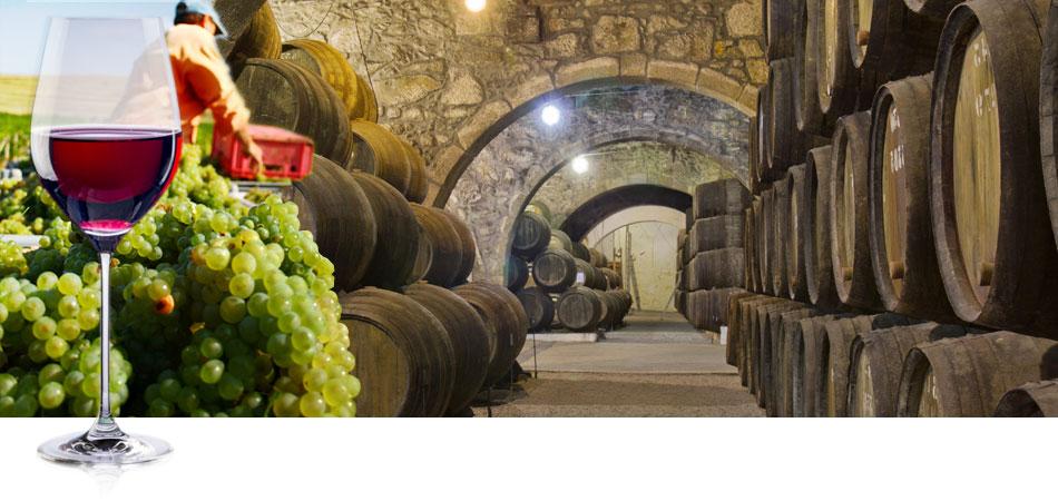 Perito Propiedad Industrial e Intelectual La Rioja: Perito Patentes y Marcas en Logroño-Etiquetado Denominación de Origen del producto